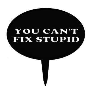 You Can't Fix Stupid Cake Topper