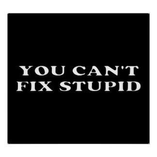 You Can't Fix Stupid Poster