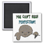 You Can't Rush Perfection Baby Sloth Magnets