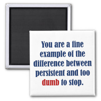 You decide persistent or just plain dumb 2 inch square magnet