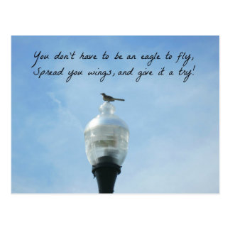 You don t have to be an eagle to fly postcards