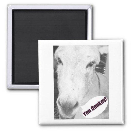 You donkey fridge magnets
