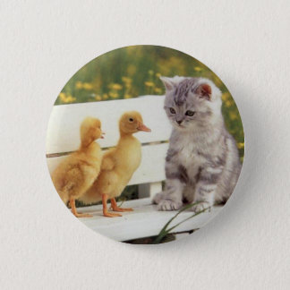 You Don't Look Like A Kitty? What Are You? Pinback Button