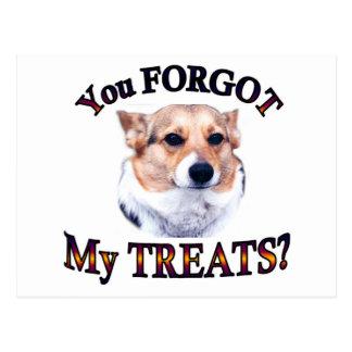 You FORGOT my treats Postcard