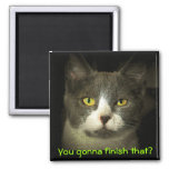 You gonna finish that? Hungry Kitty 2 Inch Square Magnet