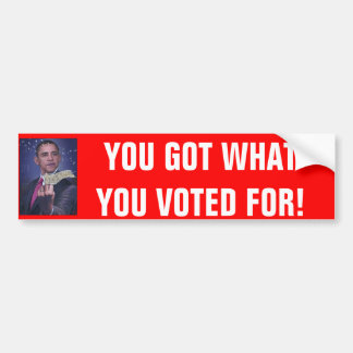 YOU GOT WHAT YOU VOTED FOR! BUMPER STICKER