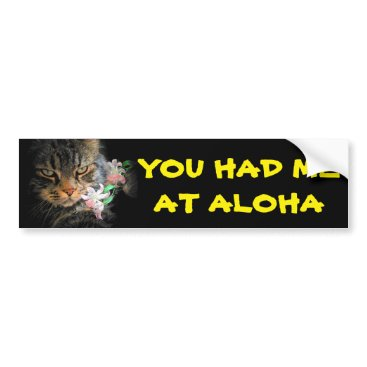Beach Themed You Had Me At Aloha Kitty with Lei Bumper Sticker