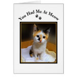 You Had Me At Meow Calico Kitten Cards