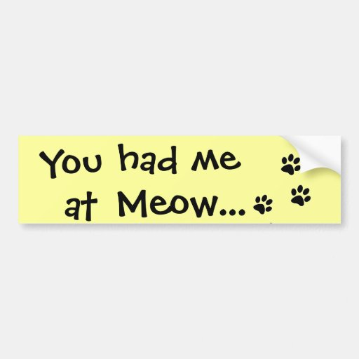 You had me at Meow...Cat Lover Car Bumper Sticker