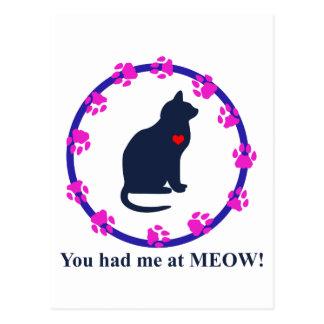 You Had Me at Meow! Postcard