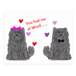 You Had Me At Woof Chow Chow Black Postcard