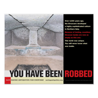 You Have Been Robbed poster