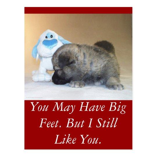 You Have Big Feet Postcard
