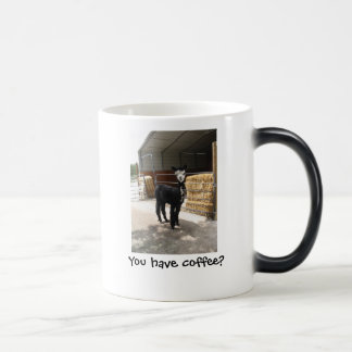 You have coffee? mug
