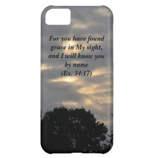 'You Have found Grace' iPhone 5C Cover