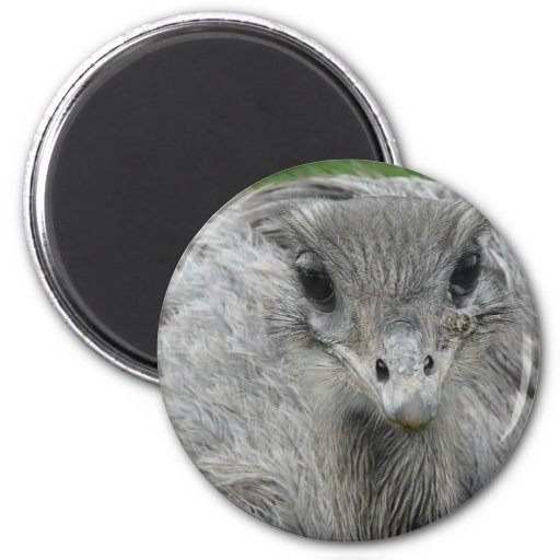 You Lookin' at Me 2 Inch Round Magnet