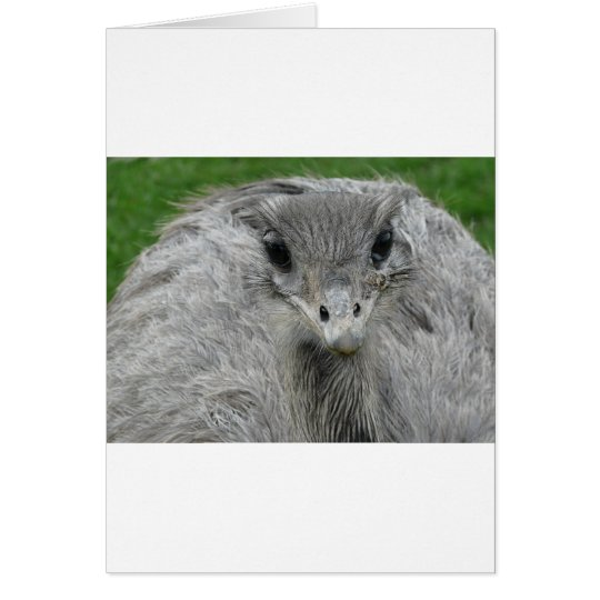 You Lookin' at Me Card