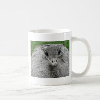 You Lookin' at Me Coffee Mugs