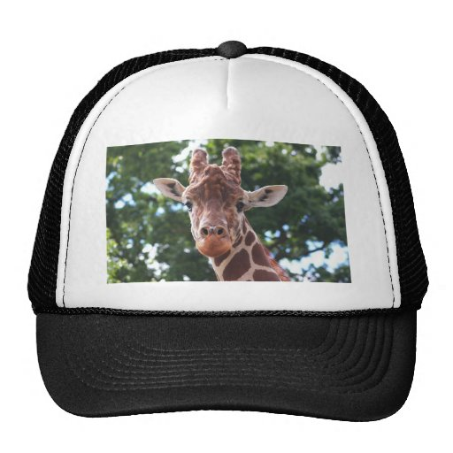You looking at me....... trucker hat