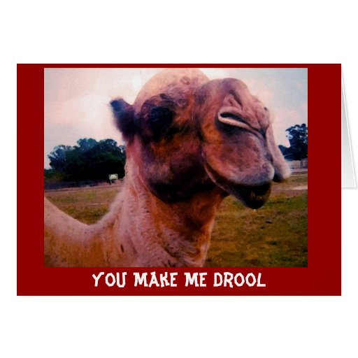 You make Me Drool Valentine's Greeting Greeting Card