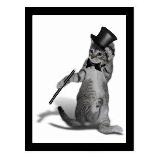 You make me feel like Dancing! Tap Dancing Cat Postcard