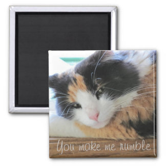 You make me rumble 2 inch square magnet