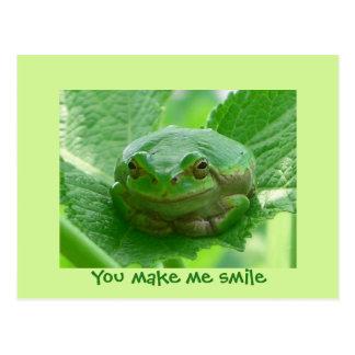 You make me smile - green frog postcards