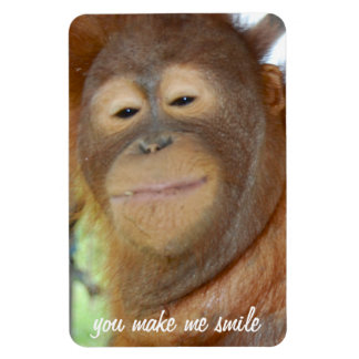 You Make Me Smile Orangutan Flexi Magnet