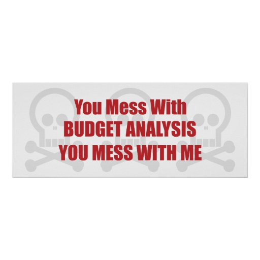 You Mess With Budget Analysis You Mess With Me Poster