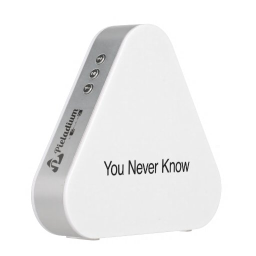 You Never Know Speaker