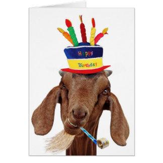 You Ol' Goat Cards