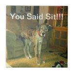 You Said Sit!!! Ceramic Tile