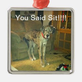 You Said Sit!!!! Metal Ornament