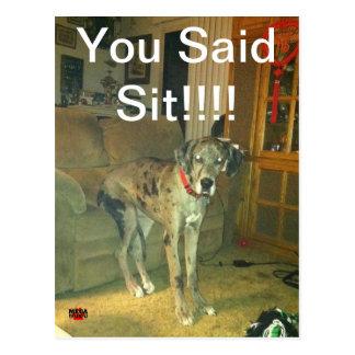 You Said Sit!!!!! Postcard