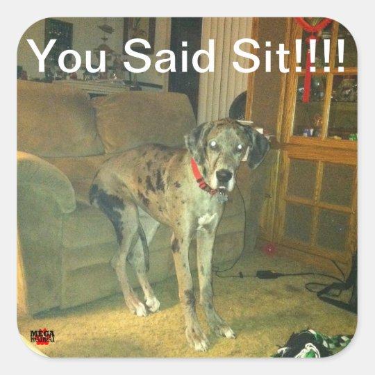 You Said Sit!!!!! Square Sticker