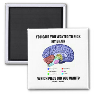 You Said You Wanted To Pick My Brain (Anatomy) Magnet