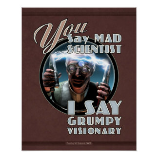 "YOU Say Mad Scientist... poster (16x20"")"