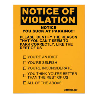 You Suck At Parking Ticket Flyer