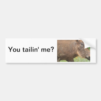 You talkin' to me? Funny warthog from Africa Car Bumper Sticker