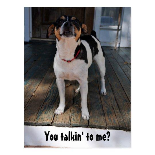 You talkin' to me? postcard