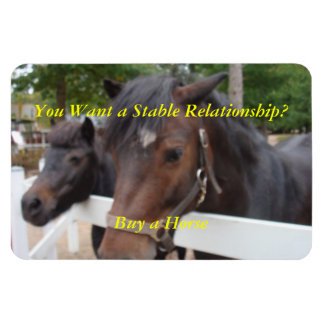 You Want a Stable Relationship? Buy a Horse Vinyl Magnets