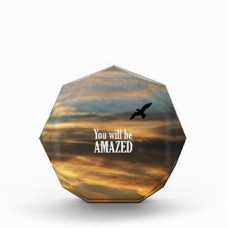 You Will Be Amazed Acrylic Award