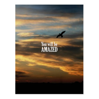 You Will Be Amazed Postcard