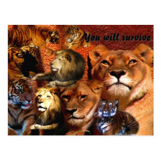 You will survive_ Postcard_by Elenne Boothe Postcard