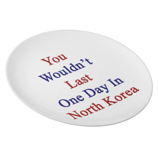 You Wouldn't Last One Day In North Korea Dinner Plates