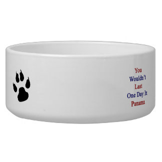 You Wouldn't Last One Day In Panama Pet Water Bowl