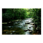Youghiogheny River Print