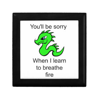 Youll be sorry - baby dragon keepsake box