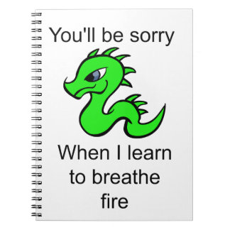 Youll be sorry - baby dragon notebook