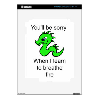 Youll be sorry - baby dragon skin for iPad 3